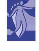 AOR Logo